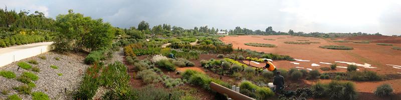 TCL Cranbourne Bot Gardenpan