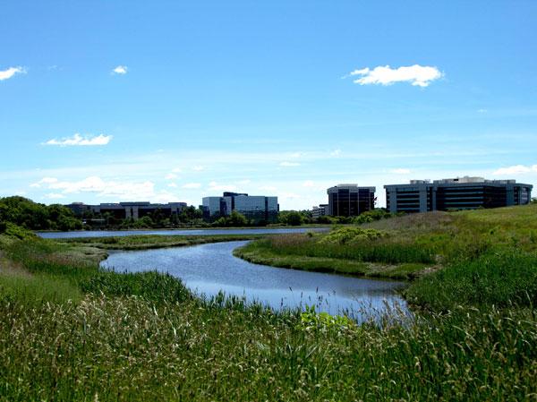 pressley_wetlands