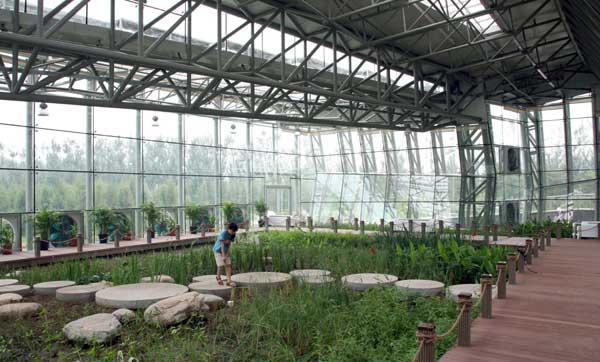 jie hu beijing forest park 2