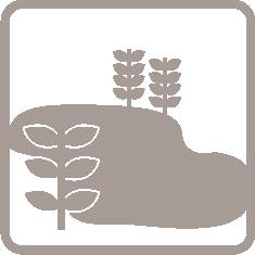 PPN Logo