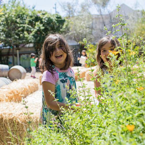 Green Schoolyards: An Interview with Sharon Danks