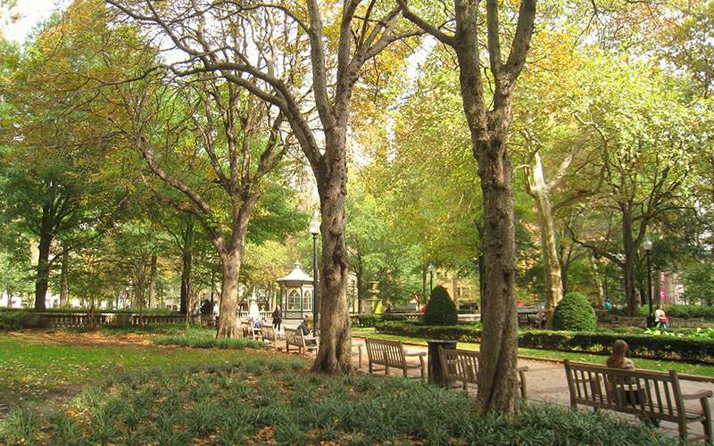 A row of benches line one of the pathways in Rittenhouse Square.