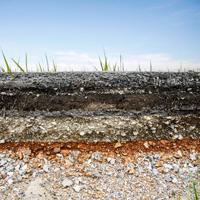 Planting Soils Thumbnail