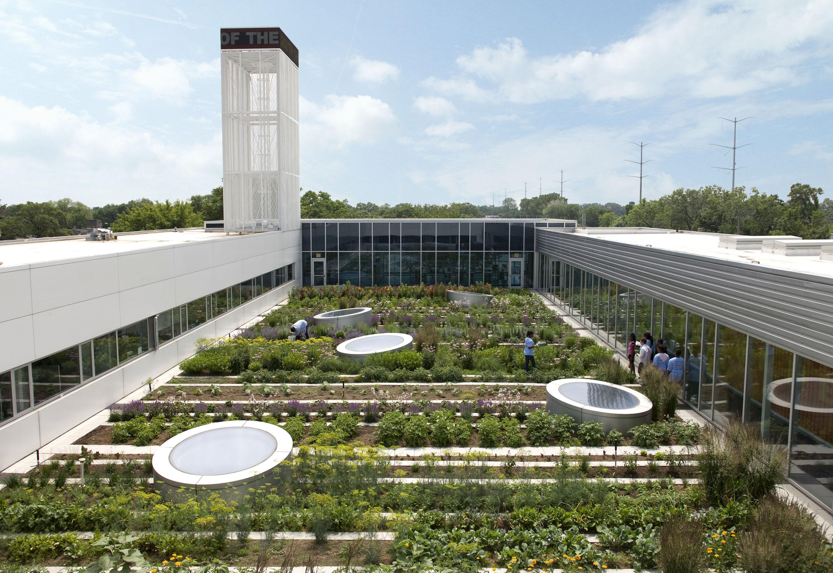 rooftop-haven