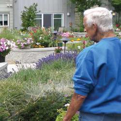 Adult-Alzheimers-Assisted-Living-Gardens.jpg