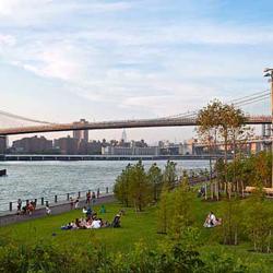 Brooklyn-Bridge-Park-Adult-General-Health.jpg