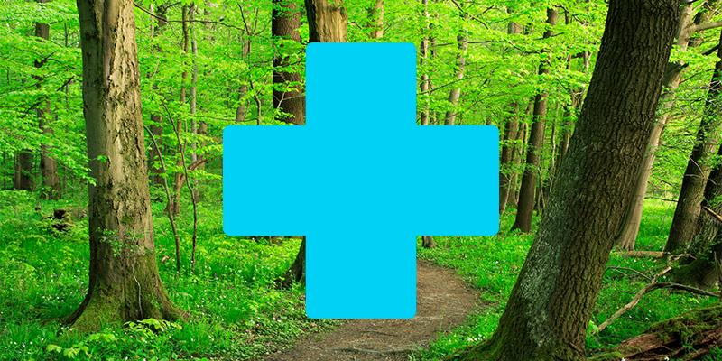 Health Benefits of Nature Header